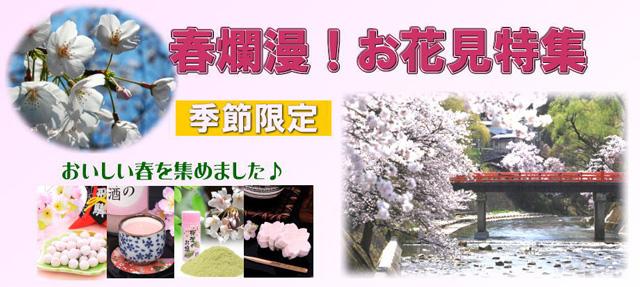 ohanami-b1.jpg