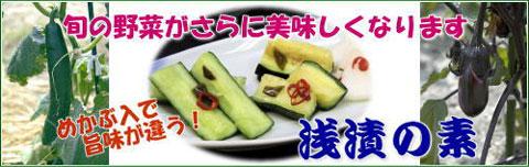 asazuke-b1.jpg