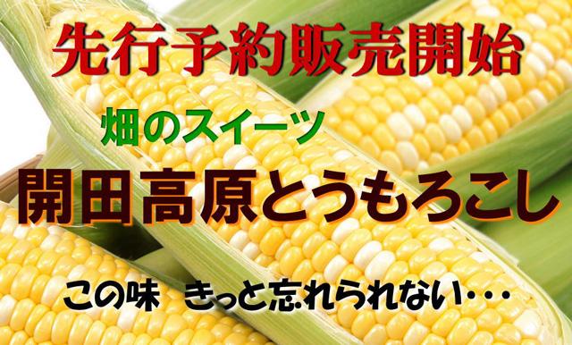 toumoro-b4.jpg